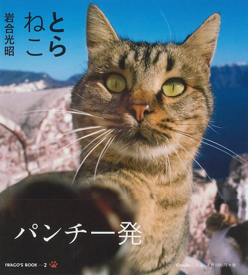 岩合光昭さんの写真集「とらねこ」の表紙