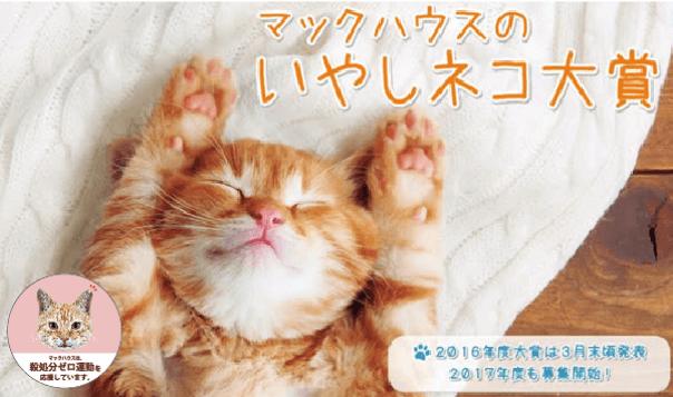 賞金10万円の猫フォトコンテスト第二回「いやしネコ大賞」