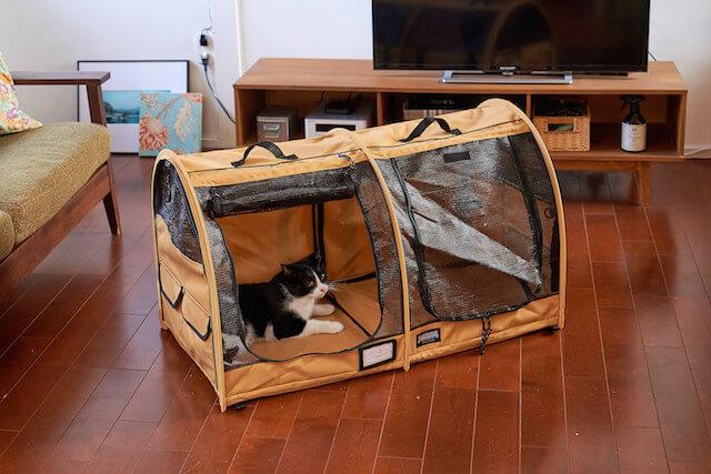 「ペットツインカーゴ」を1匹の猫で使用したイメージ