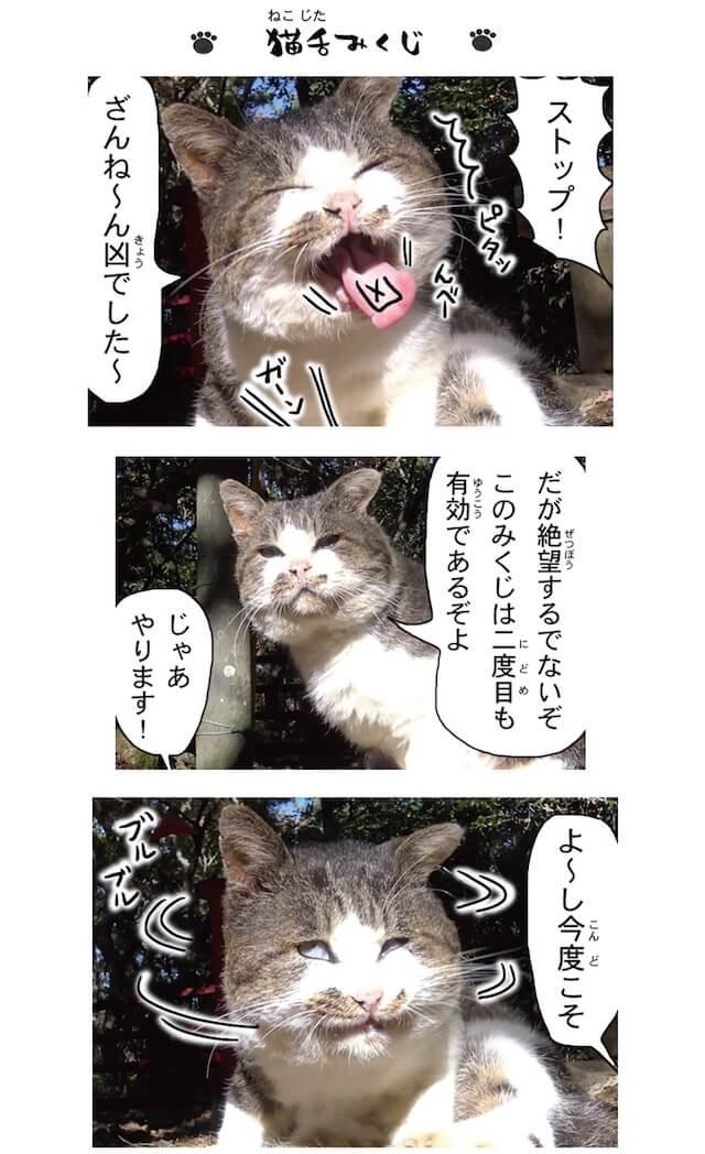 フォトコミック「田代島ねこ便り」猫マンガ誌面イメージ6