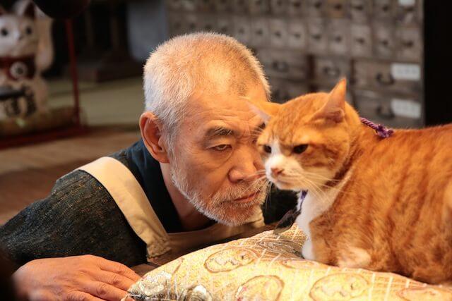 映画猫忍の初公開写真、柄本明と猫の金時