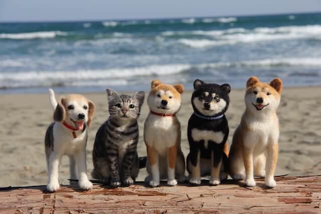 中山みどり作、羊毛フェルトアート猫と犬