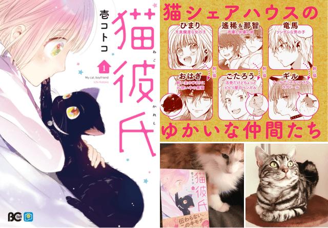 猫シェアハウスを舞台にしたコミック「猫彼氏」の1巻が発売