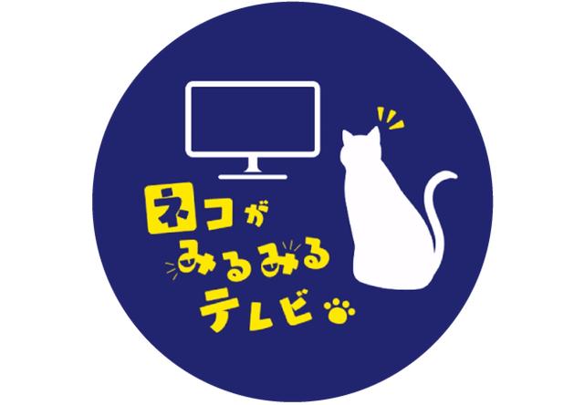 猫が見るための番組「ネコがみるみるテレビ」NHK関西で放送