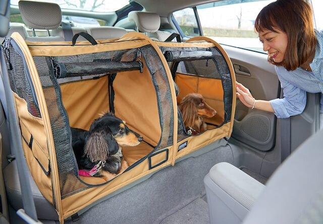 仲が悪い猫でも一緒に運べる、2部屋に仕切れるキャリーバッグ「ペットツインカーゴ」
