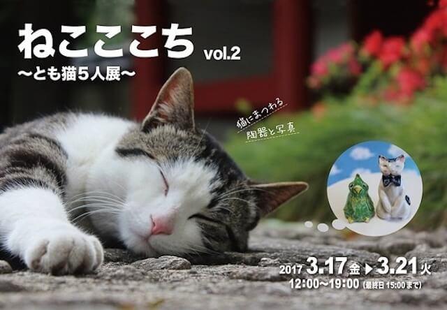 千駄木のギャラリーで猫写真&陶器の作品展「ねこここちvol.2 ~とも猫5人展~」が開催中