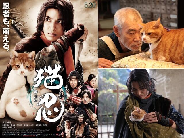 映画猫忍の新着情報、ポスタービジュアル&撮影カットを初公開
