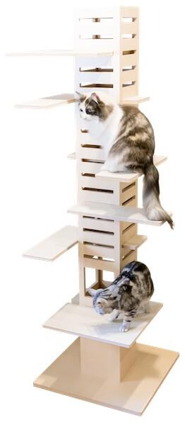 キャットタワー「necobacoT」に猫が上っている写真
