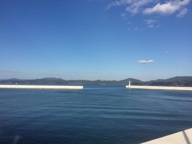 宮城県の猫島「田代島(たしろじま)の外観
