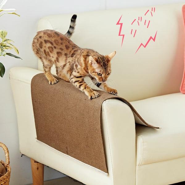 猫の爪とぎからソファを守る対策グッズ