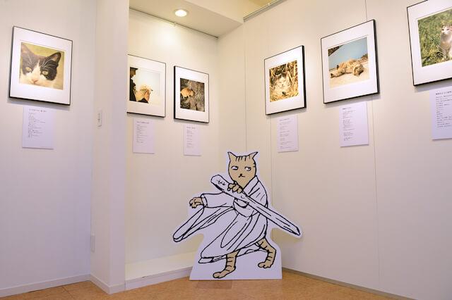 南幅俊輔写真展「老子と猫」の展示作品