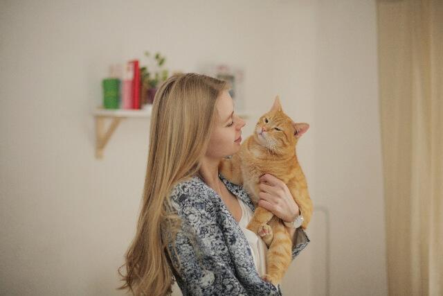猫を抱っこしている女性のイメージ