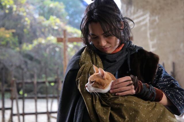 大野拓朗に可愛がられる父上役の猫・金時