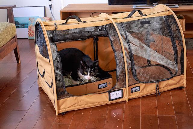 中に猫トイレを置いても、空きスペースにゆとりがある猫キャリーバッグ「ペットツインカーゴ」