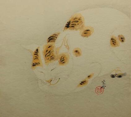 河鍋暁斎の作品「眠る猫」