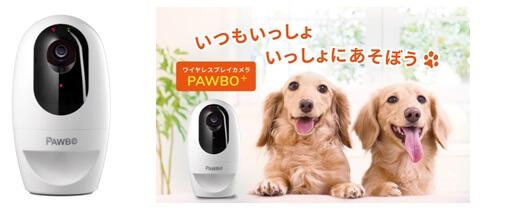 ワイヤレスプレイカメラ PAWBO+(パウボプラス)