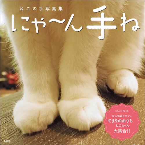 玄光社から発売、猫写真家の中山祥代さんの写真集「にゃ~ん手ね」