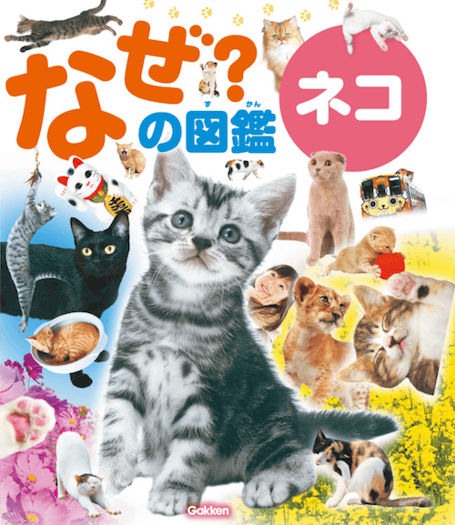 書籍「なぜ?の図鑑 ネコ」の表紙