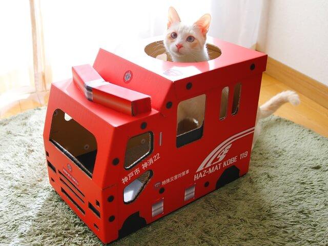 爪とぎを完備した猫用の消防車が登場!ペットによる火災を注意喚起