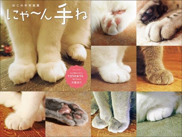 思わず触れたくなる、猫の手ばかりを集めた写真集「にゃ~ん手ね」