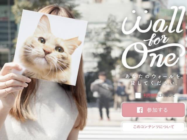 Facebookのタイムラインを保護猫に貸し出すキャンペーンが開催中
