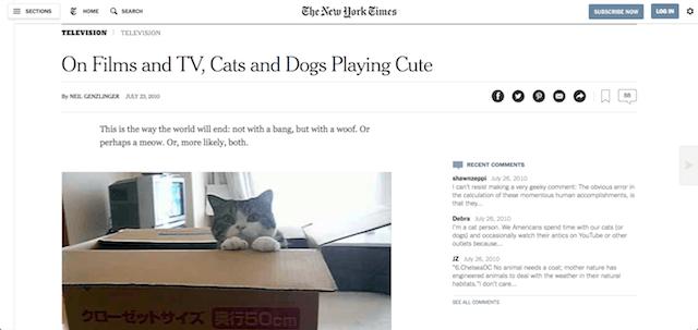 ニューヨーク・タイムズでも取り上げられた猫の「まる」