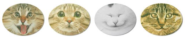 猫のなりきりフェイスパックは4種類の猫顔がラインナップ