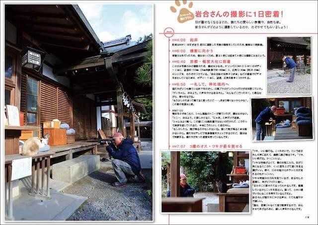 岩合光昭さんの猫撮影に密着した撮り下ろしルポ