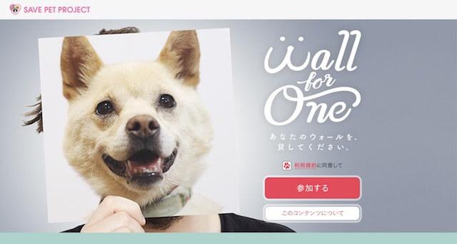 プロフィールアイコンを保護犬にしたイメージ