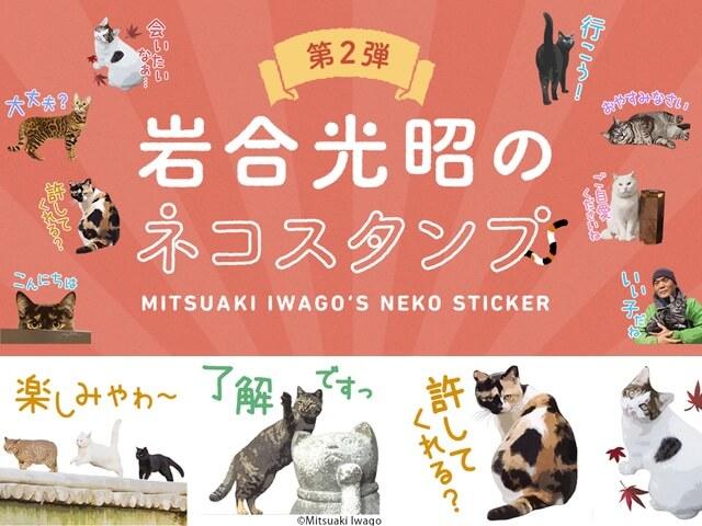岩合光昭さんのLINEスタンプ第二弾「ねこの京都」が公開