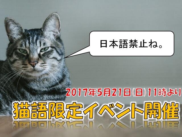 ネコ語限定のサバゲーイベントがASOBIBAで開催!日本語は禁止ですニャ