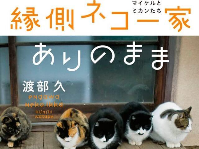 野生動物を撃退する猫たちに密着「縁側ネコ一家 ありのまま」