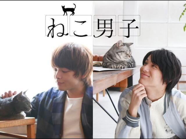 中川大志など人気俳優×猫の写真展「ねこ男子」が熊本で開催
