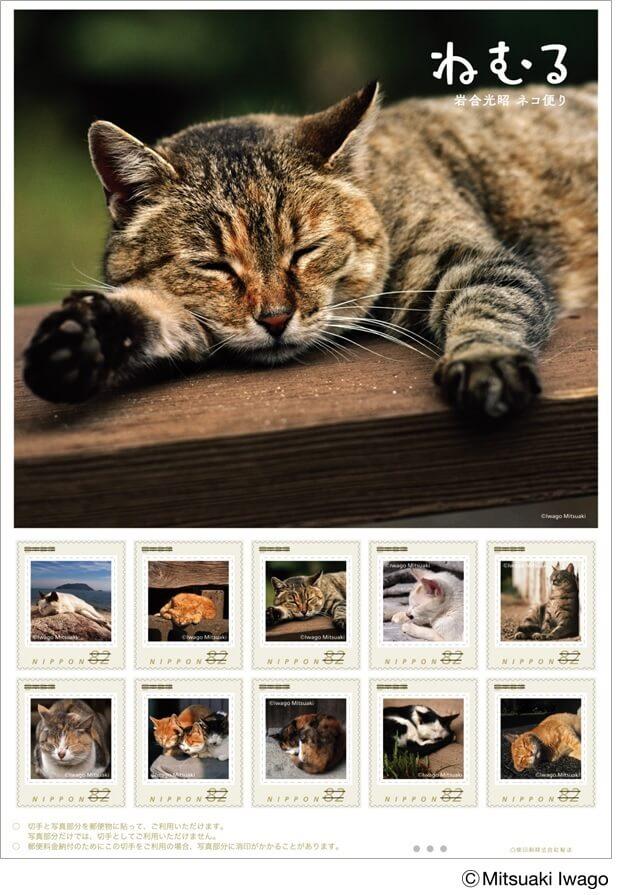 岩合光昭×郵便局コラボ切手セット第三弾「ねむる」