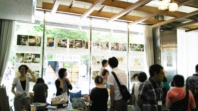 東京 ねこまーケットの開催風景