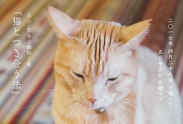 So-Ra企画ねこ展「猫とつき合う法」