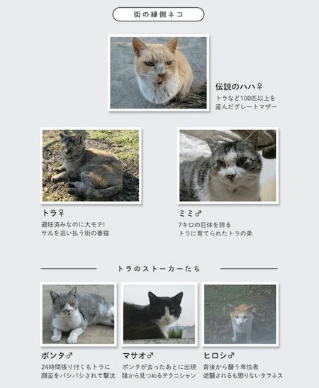 街の縁側ネコ