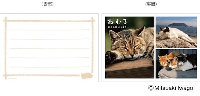 岩合光昭切手セット「ねむる」メッセージカード