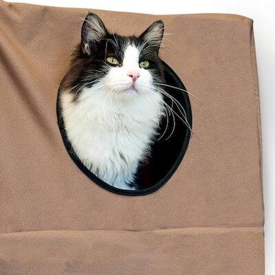 猫ハウス「Hangin Cat Condo」に入った猫