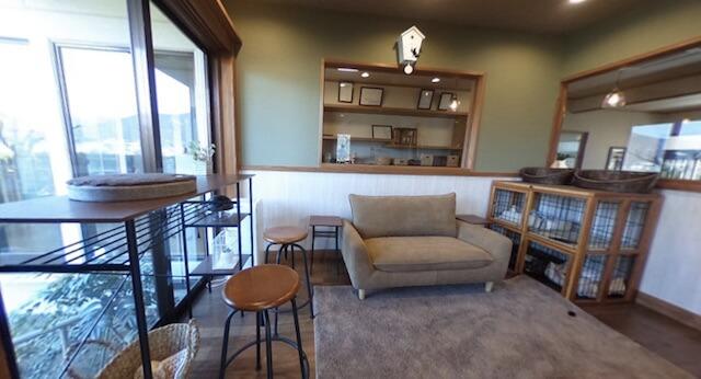 湯布院の猫カフェ「笑ねこカフェ」の店内イメージ2