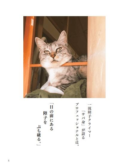 ココニャさんちの障子破り猫軍団、サバ身の名言