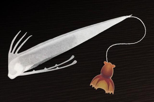 ティーバッグ「OCEAN-TEABAG」、リュウグウノツカイのアッサムティー1