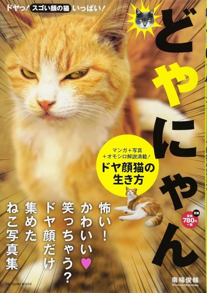 写真集「どやにゃん ドヤ顔猫の生き方」の表紙