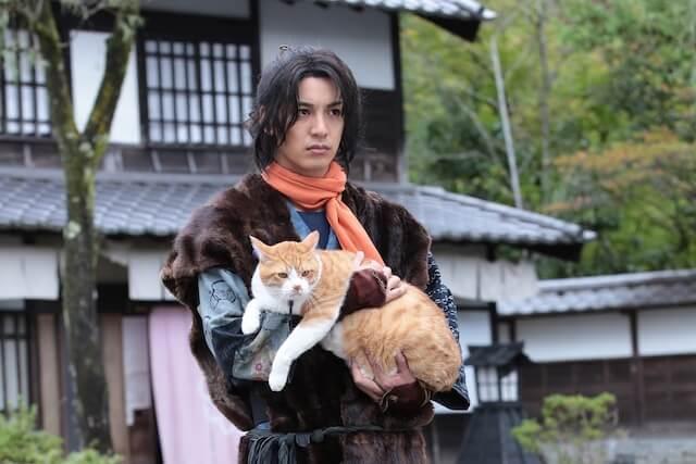 映画・猫忍(大野拓朗と猫の金時)