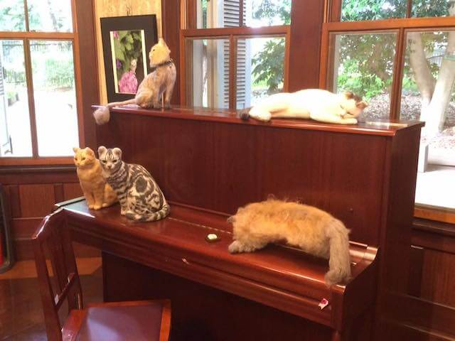 羊毛フェルト作家「ちゃちゃきなな」の猫フェルト作品も展示