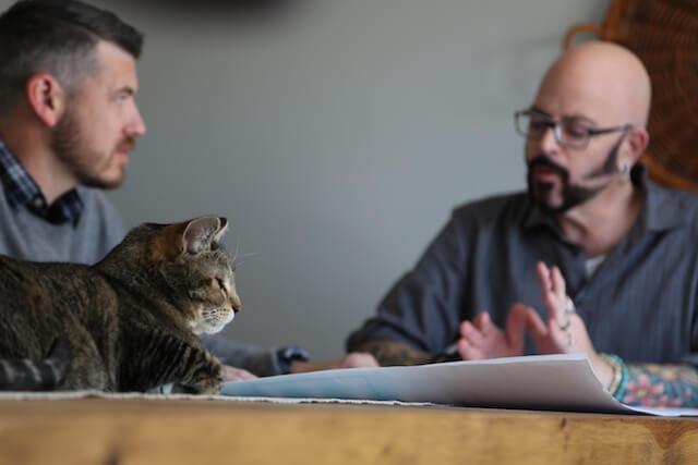 「猫ヘルパー シーズン8~猫のしつけ教えます~」第三話、にゃんこ街の悪夢