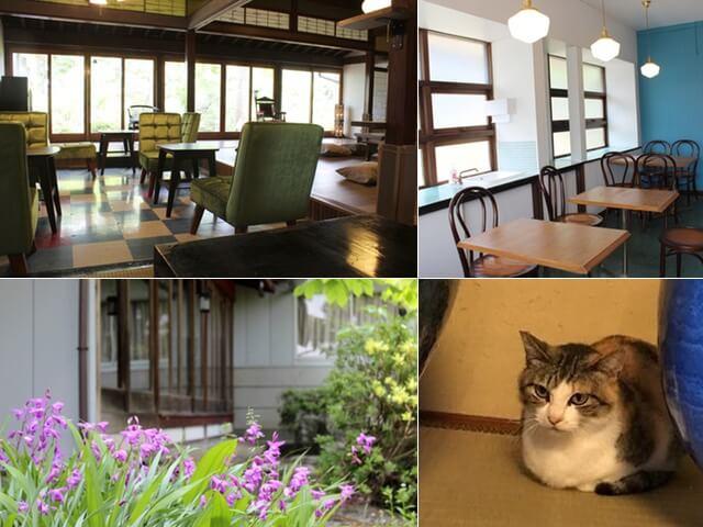 古民家を改修したレトロなお店、富山初の保護猫カフェ「月猫カフェ」