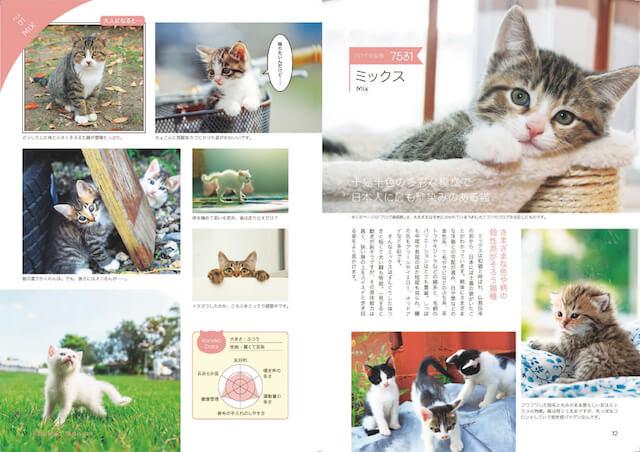 世界の猫30種類の子猫を収録したムック本、子猫マニアックス