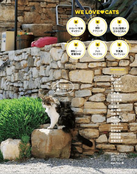 カメラ専門誌ならではの「猫を撮ること」にフォーカスした特集を掲載