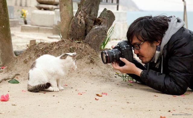 猫をカメラで撮影する沖昌之さん